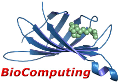 BioComputing UP logo